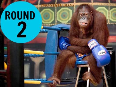 monkey-boxER