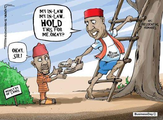 rochas nwosu cartoon